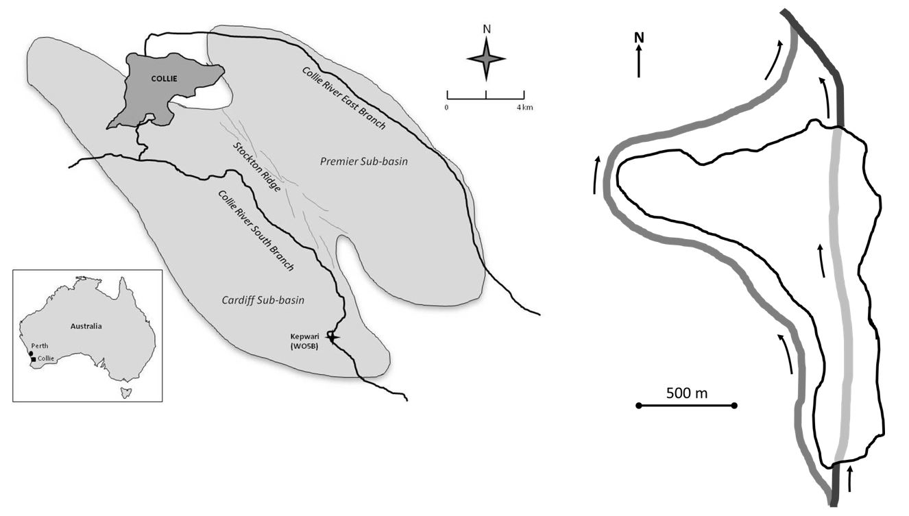Figure 1. Location of Lake Kepwari in Western Australia (left) and conceptual model of Lake Kepwari flow-through design (right) showing historical CRSB channel in black, previous river diversion in dark grey and flow through lake in light grey.